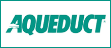 Aqueduct Horse Betting