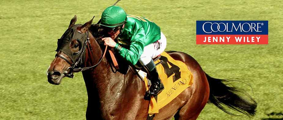 Bet on the 2016 Jenny Wiley
