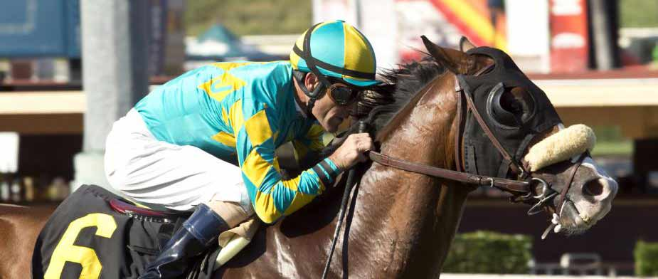 Bet on the 2016 Los Angeles Stakes