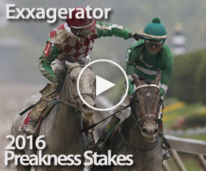 2016 Preakness Stakes Race Replay