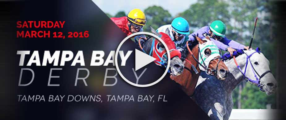 2016 Tampa Bay Derby Race Replay