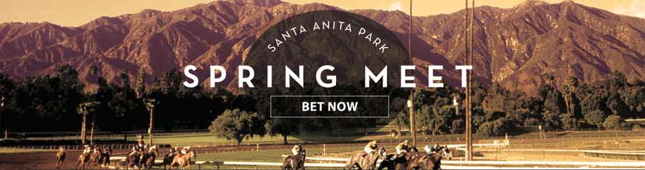 Bet Horse Racing Online