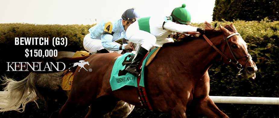 2016 Bewitch Stakes Preview Entries Amp Odds Off Track