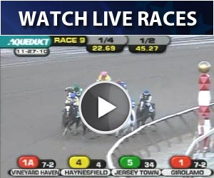 Watch Live Horse Racing