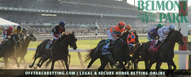 Online horse betting in las vegas nv betting 2000 quote pdfdx