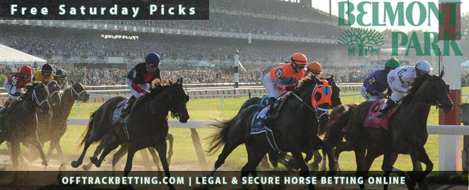 Belmont Park Free Picks