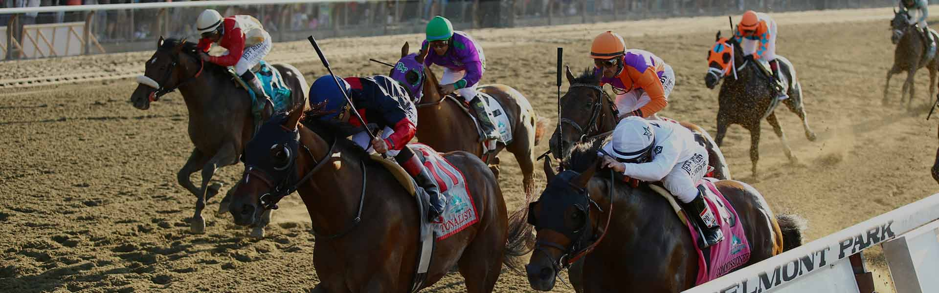 horse racing how to bet