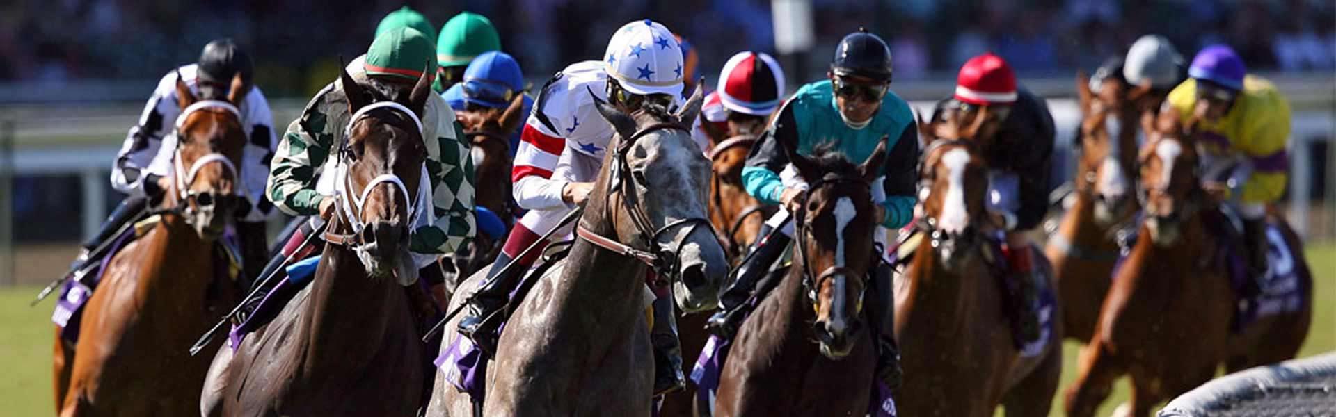bet online horse racing