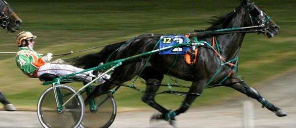 Harness Racing Betting Online