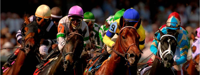 Horse Wagering Online