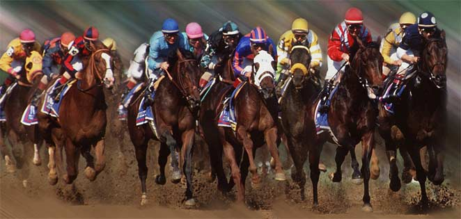 Preakness Stakes Contest