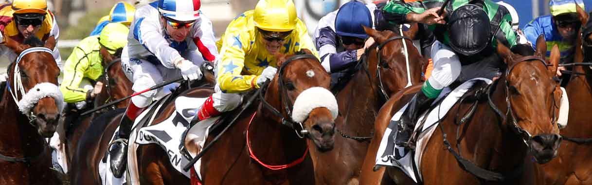 horse betting online texas
