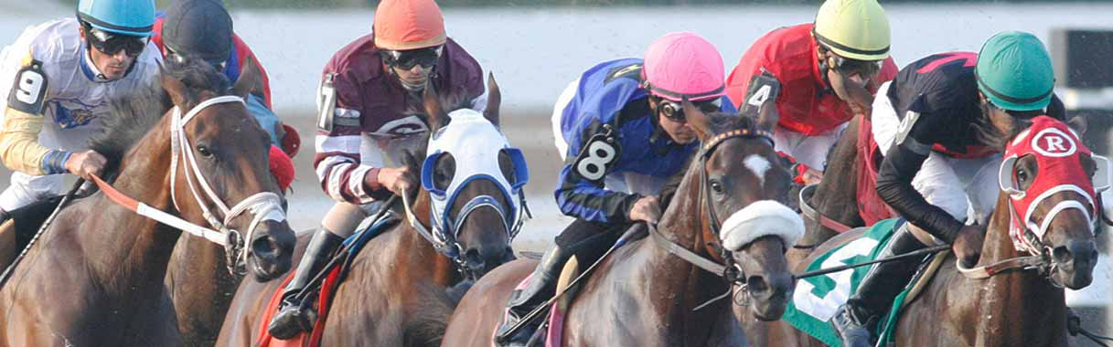 Whitney Handicap 2019: Preview, Entries & Odds | OFF TRACK BETTING
