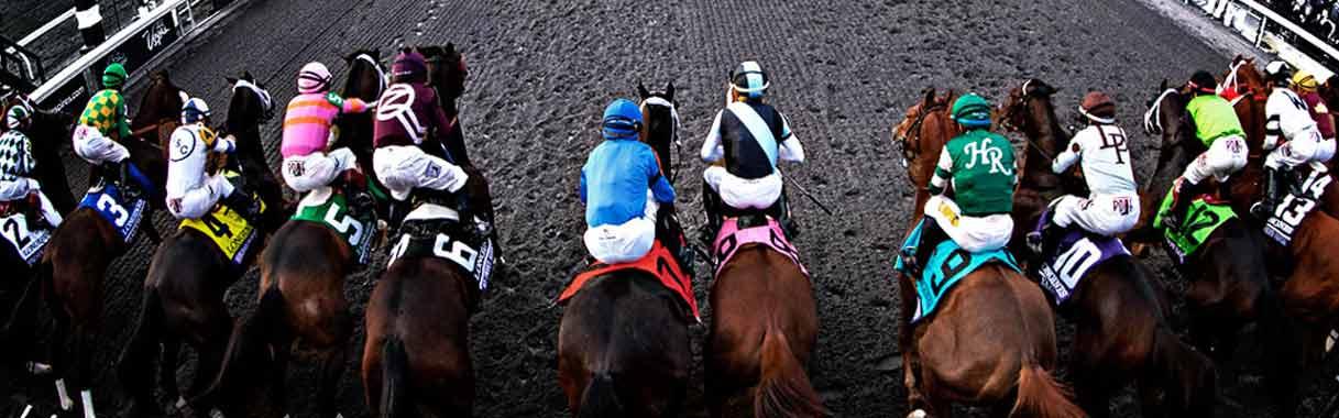 Horse Betting Online