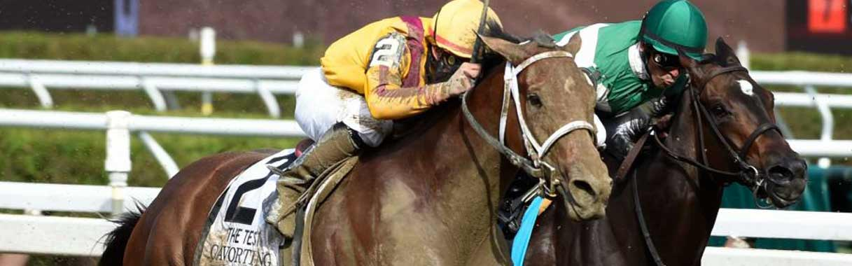 Horse Betting Online