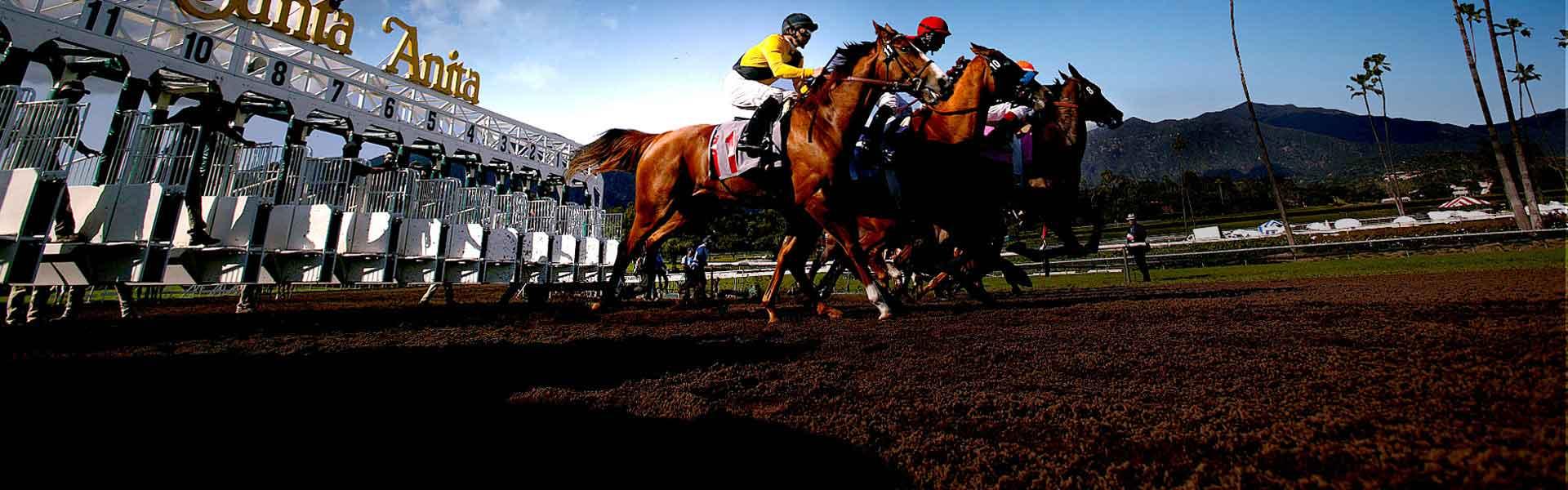Bet Santa Anita Park