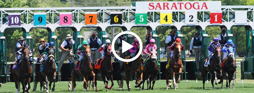 Watch Live Horse Racing Online